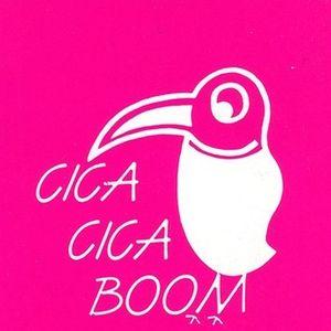 CICA CICA BOOM (Roma) Maggio 1991 - DJ FRANCO SCIAMPLI