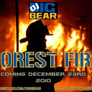 DJ BIG BEAR PRESENTS FOREST FIRE