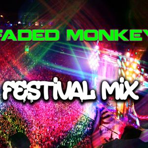 Faded Monkey-WHAT THE FUCK IS A FESTIVAL MIX?!