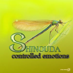 Shinouda - Controlled Emotions (ReleaseMix by Logic Spin)