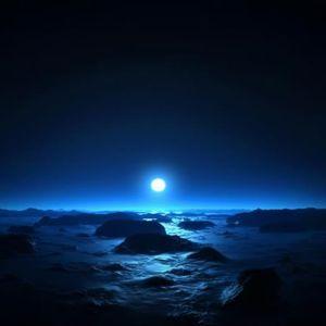 Arctic Planet 2012