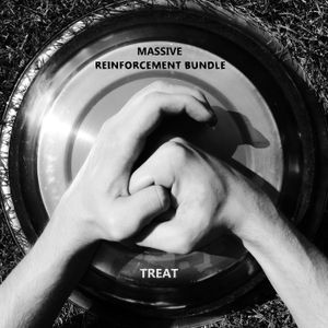 Treat - Reinforcement bundle 6