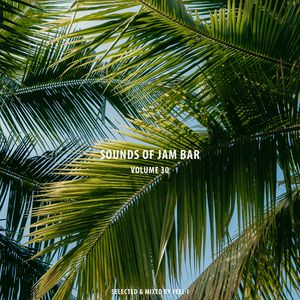 Sounds of Jam Bar Volume 30 (Selected & Mixed by Feel-I)