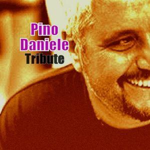 Tribute to Pino Daniele