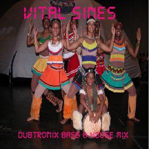 Dubtronix Bass & House Mix