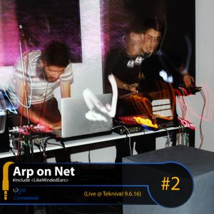 Arp on Net #2: Live @ Teknival 9.6.16