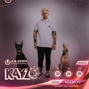 KAYZO @ ULTRA MUSIC FESTIVAL MIAMI 2018 FELL SET