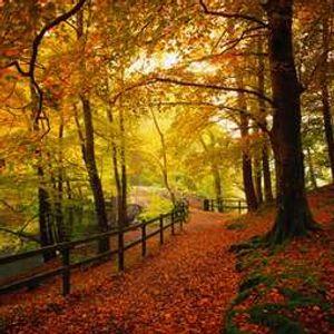 Ismar Vehabovic - Autumn Mix (2012)