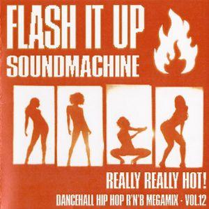 VA - FLASH iT UP MEGAMiX VOL.12 - REALLY REALLY HOT! - 2004