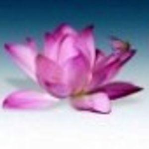 Amándote a ti mismo: para vivir el plenitud