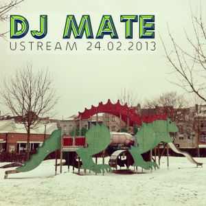 UStream Session  24.02.2013
