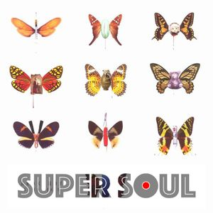SuperSoul 14