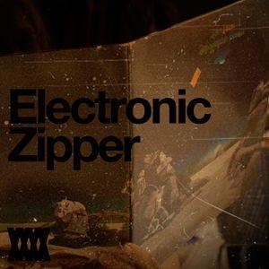 Electronic Zipper