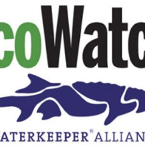 EcoWatch News Broadcast - 1/14/2013 (partial)