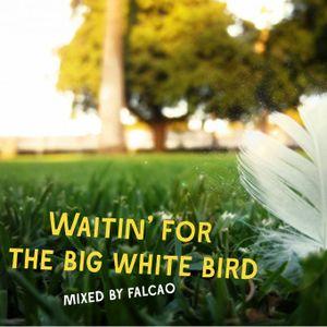 Falcao - Waitin' for the big white bird (Felkelők Guest mix 2011. 01. 10.)