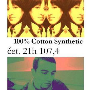 100 % Pamučna sintetika br. 17, 8. 11. 2007 - Deine Lakaien vs. Diary of Dreams