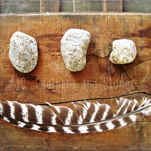 Feathers and Stones