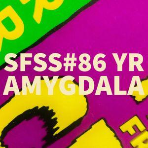 SFSS#86 yr Amygdala
