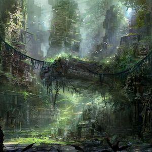 Orban Jungle