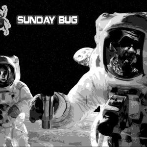Sunday Bug #21 (Max Voitech)