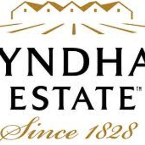 Wyndham Estate - Shyraz