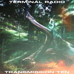 Terminal Radio - Transmission 10