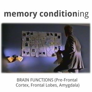433a: Memory Conditioning - Brain Functions (Pre-Frontal Cortex, Frontal Lobe, Amygdala)