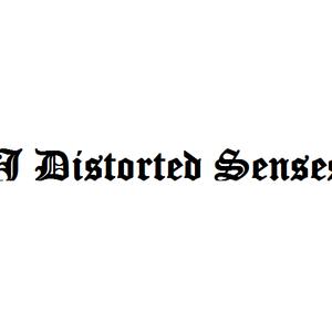 DJ Distorted Senses - Going against myself is a myth