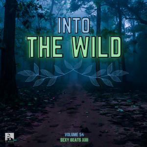 Into The Wild Vol. 54 (Sexy Beats XIIII) - Previews Only For Zouk My World Radio