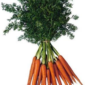Mixed Bag of Carrots