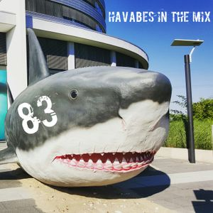 Havabes In The Mix - Episode 083
