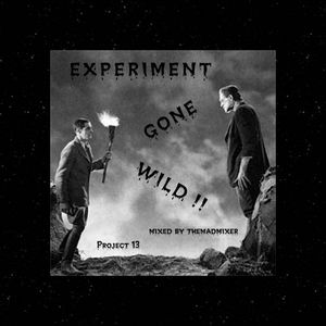 project 13 - Experiment Gone Wild !!