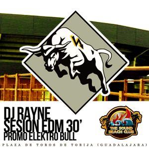 ELEKTRO BULL PROMO (Dj Rayne EDM Sesion 30') 17/05/2014 PLAZA DE TOROS DE TORIJA GUADALAJARA