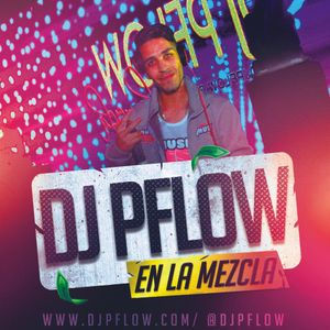 DJ Pflow - Mix 028 - 2017