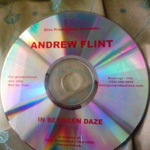 Andrew Flint - In Between Daze (Summer, 2005 Vinyl set)