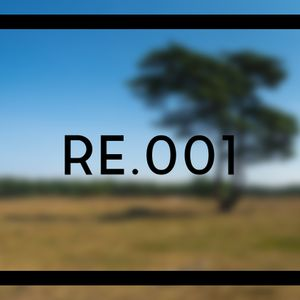 Remote Echoes .001