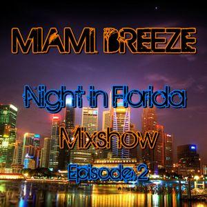 Miami Breeze - Night in Florida Mixshow Episode 2 (February 2012)