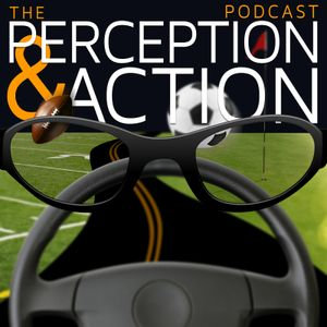 20C – The Ecological Approach to Perception-Action & Implications for Skill Acquisition