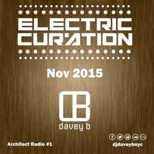 Electric Curation November 2015 (Architect Radio #1)