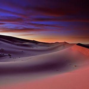 FDT - # 027 - Sahara Nights