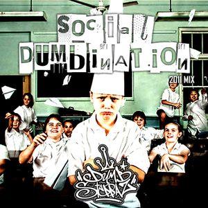 Dumbsteppaz - Social Dumbination 2011 Mix