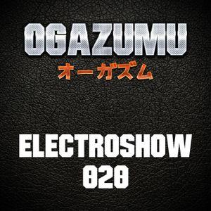Ogazumu ElectroShow 020
