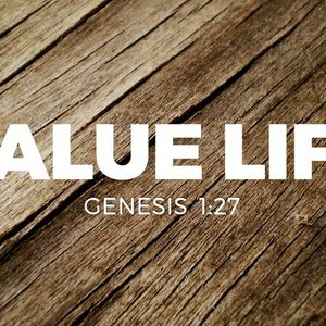 Value Life [Genesis 1:27]