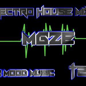 MGze - Electro house Mix #2