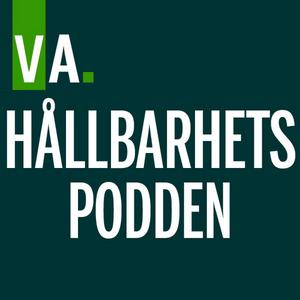 49. Henri de Sauvage Nolting, vd Arla Sverige