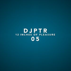 DJPTR - 12 Inches of Pleasure 05