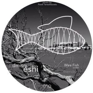 Friends For Wire Fish Podcast #O1O_Dmitry Eshi
