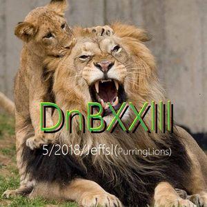 DnB XXlll Put God First (purringLions)