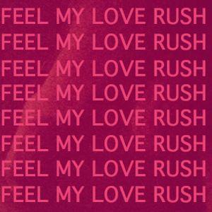 feel my love rush volume six (2013)