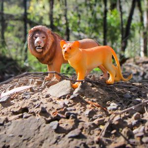 Real Thing: backyard lion safari